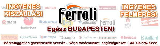 ferroli gázkészülékek javítása, szervíze, karbantartása, cseréje