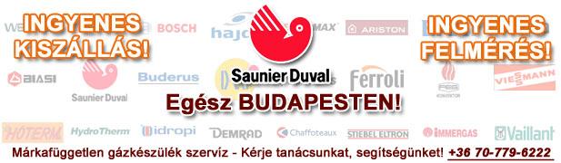 saunier duval gázkészülékek javítása, szervíze, karbantartása, cseréje